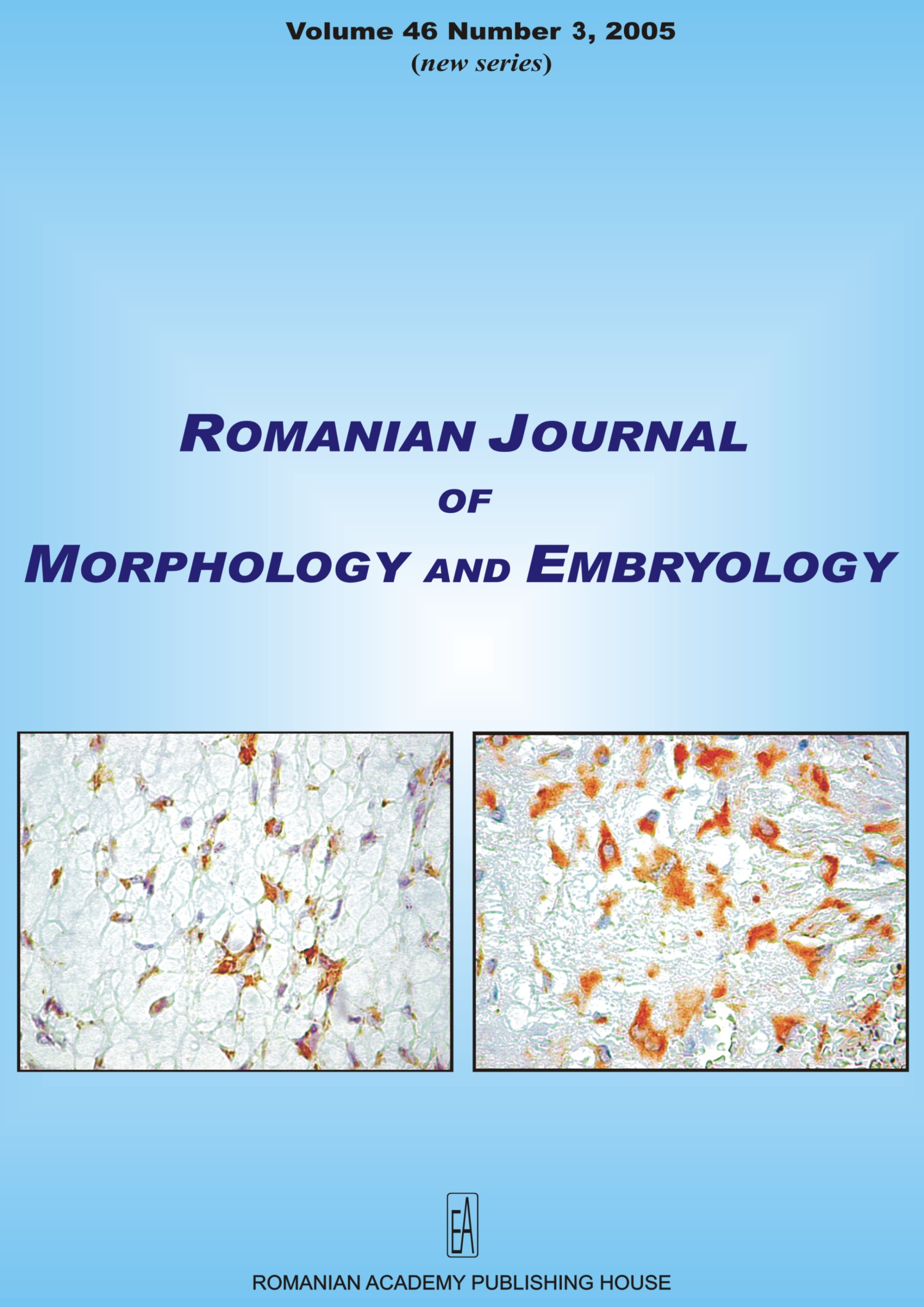 Romanian Journal of Morphology and Embryology, vol. 46 no. 3, 2005