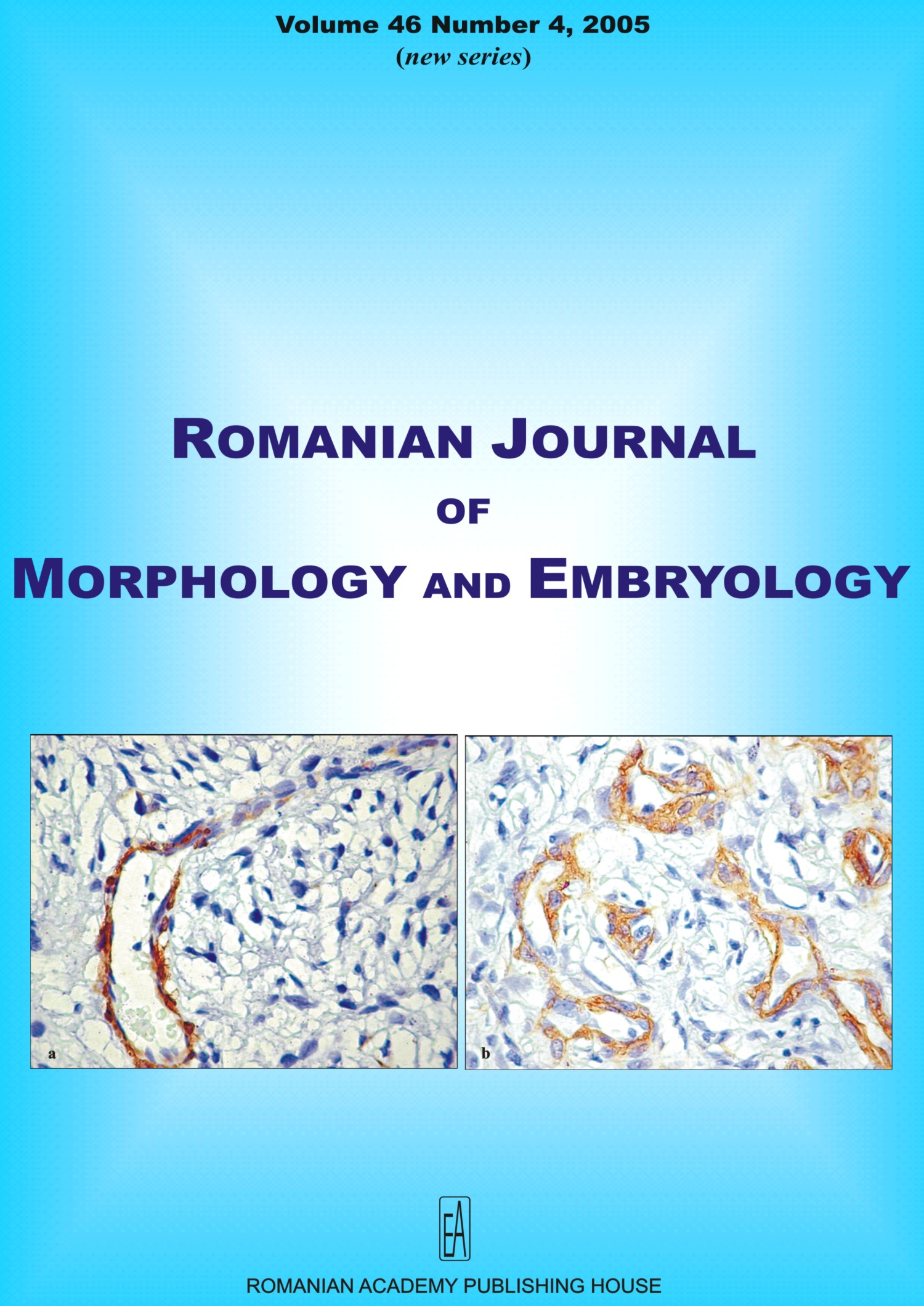 Romanian Journal of Morphology and Embryology, vol. 46 no. 4, 2005