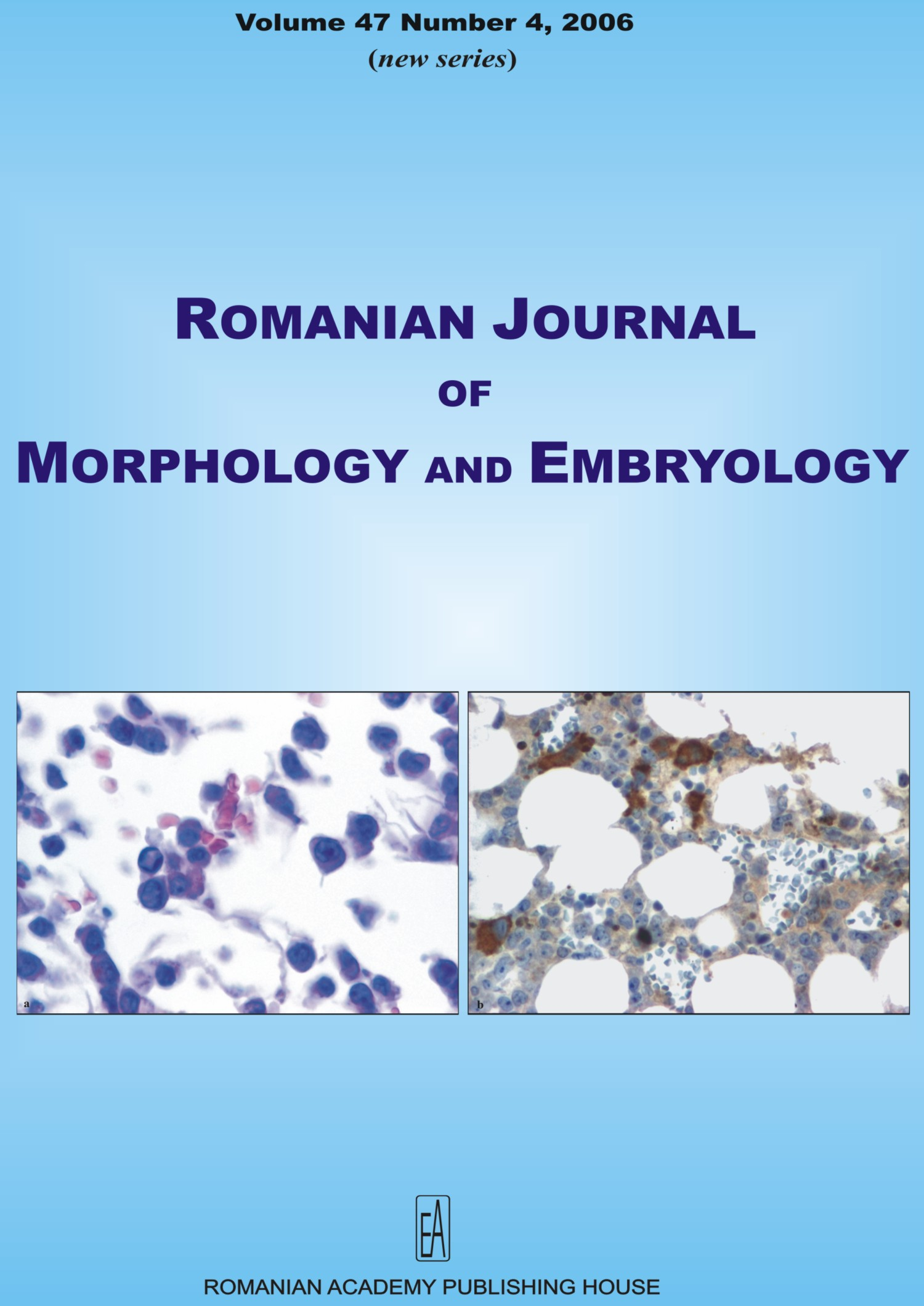 Romanian Journal of Morphology and Embryology, vol. 47 no. 4, 2006