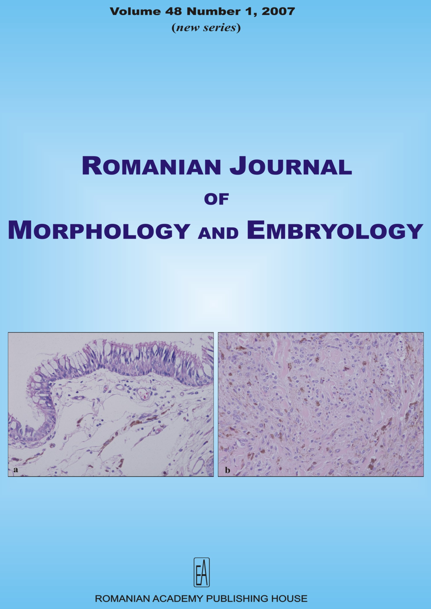 Romanian Journal of Morphology and Embryology, vol. 48 no. 1, 2007