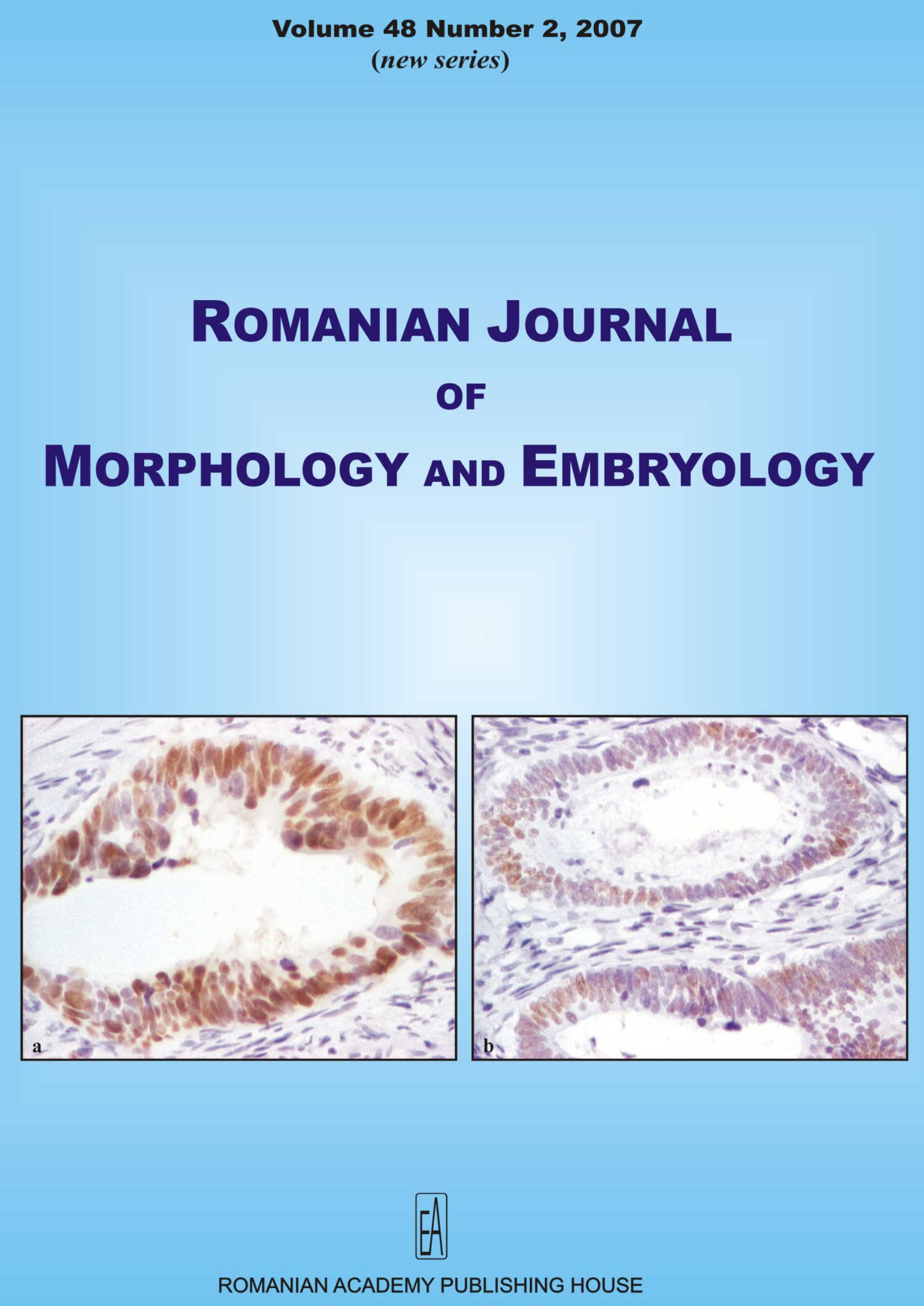 Romanian Journal of Morphology and Embryology, vol. 48 no. 2, 2007