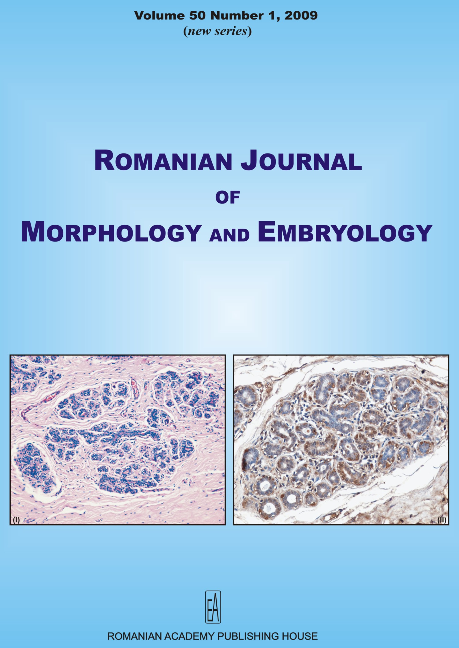 Romanian Journal of Morphology and Embryology, vol. 50 no. 1, 2009