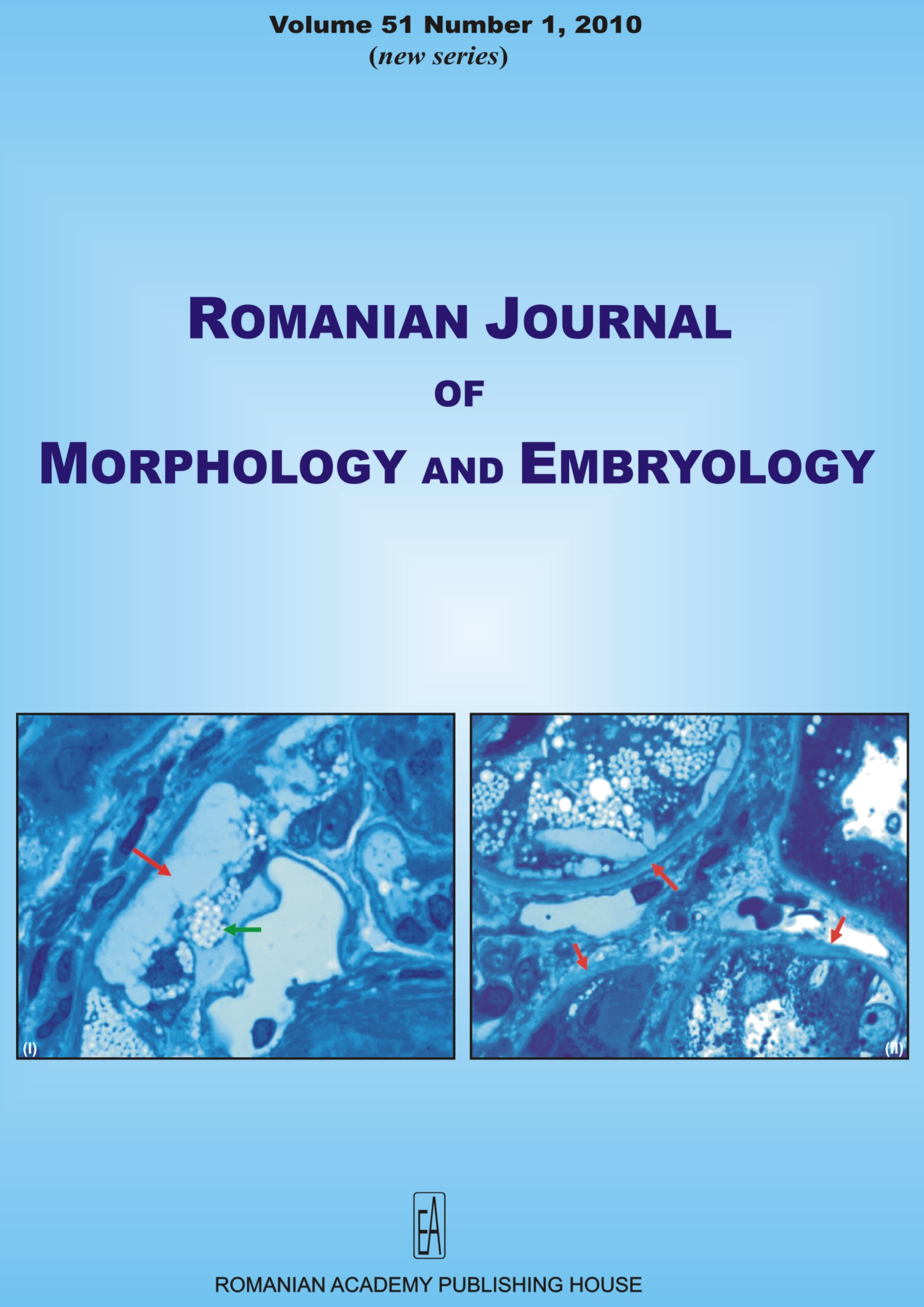 Romanian Journal of Morphology and Embryology, vol. 51 no. 1, 2010
