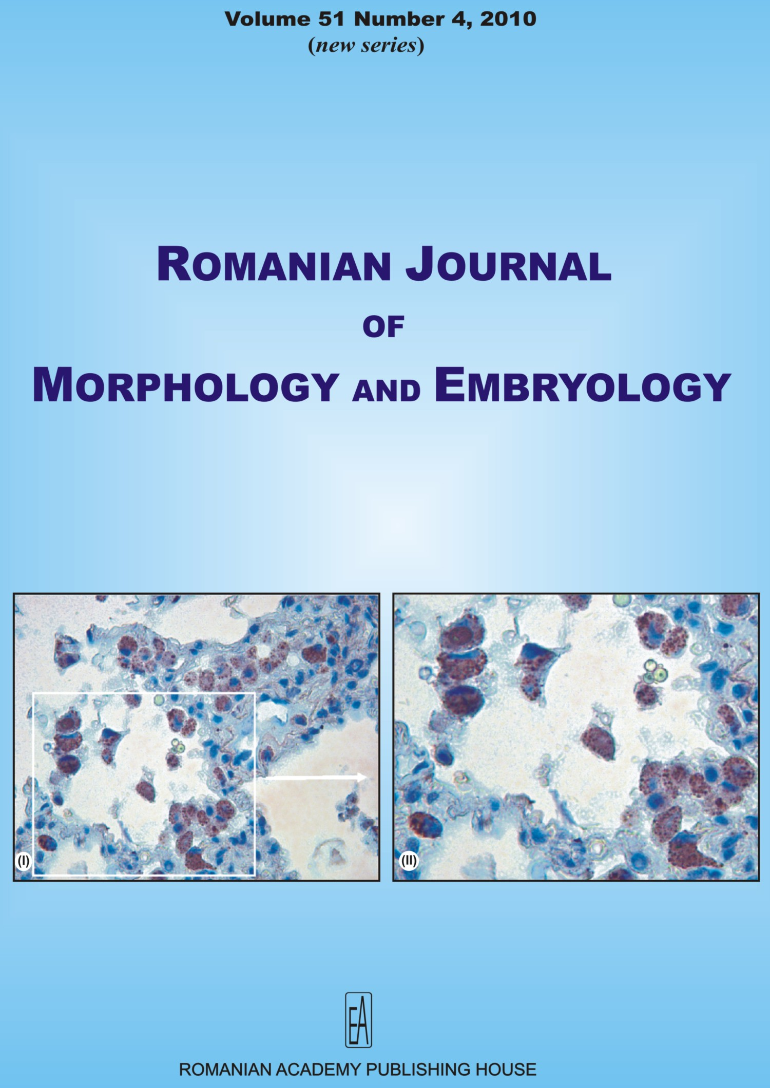 Romanian Journal of Morphology and Embryology, vol. 51 no. 4, 2010