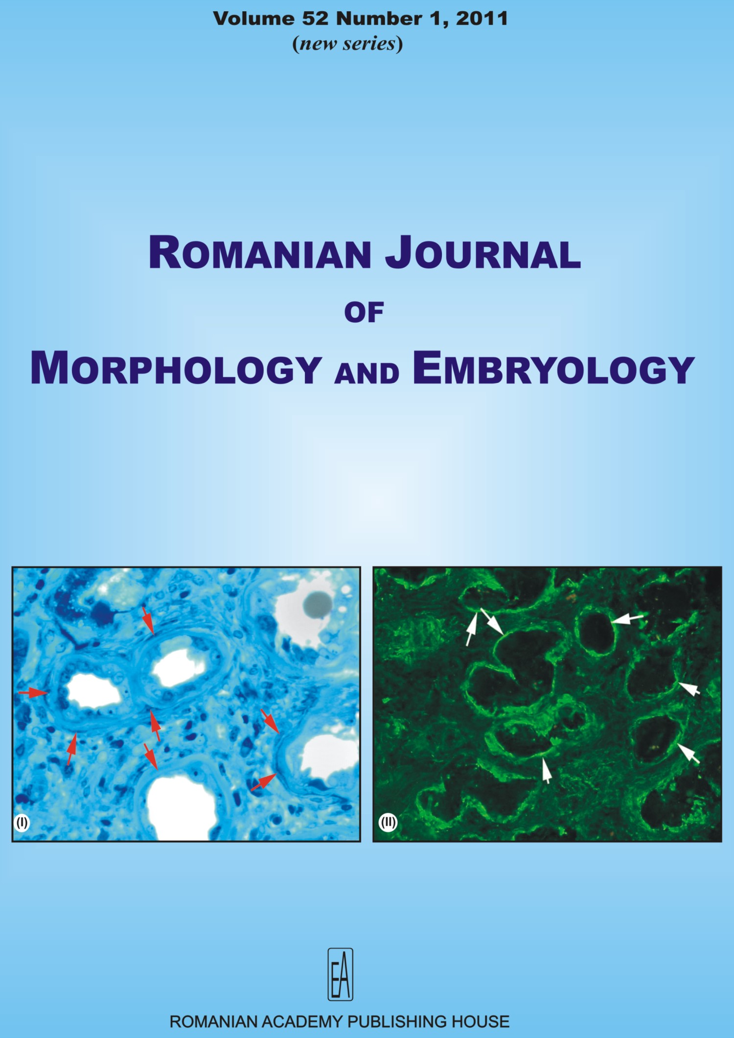Romanian Journal of Morphology and Embryology, vol. 52 no. 1, 2011
