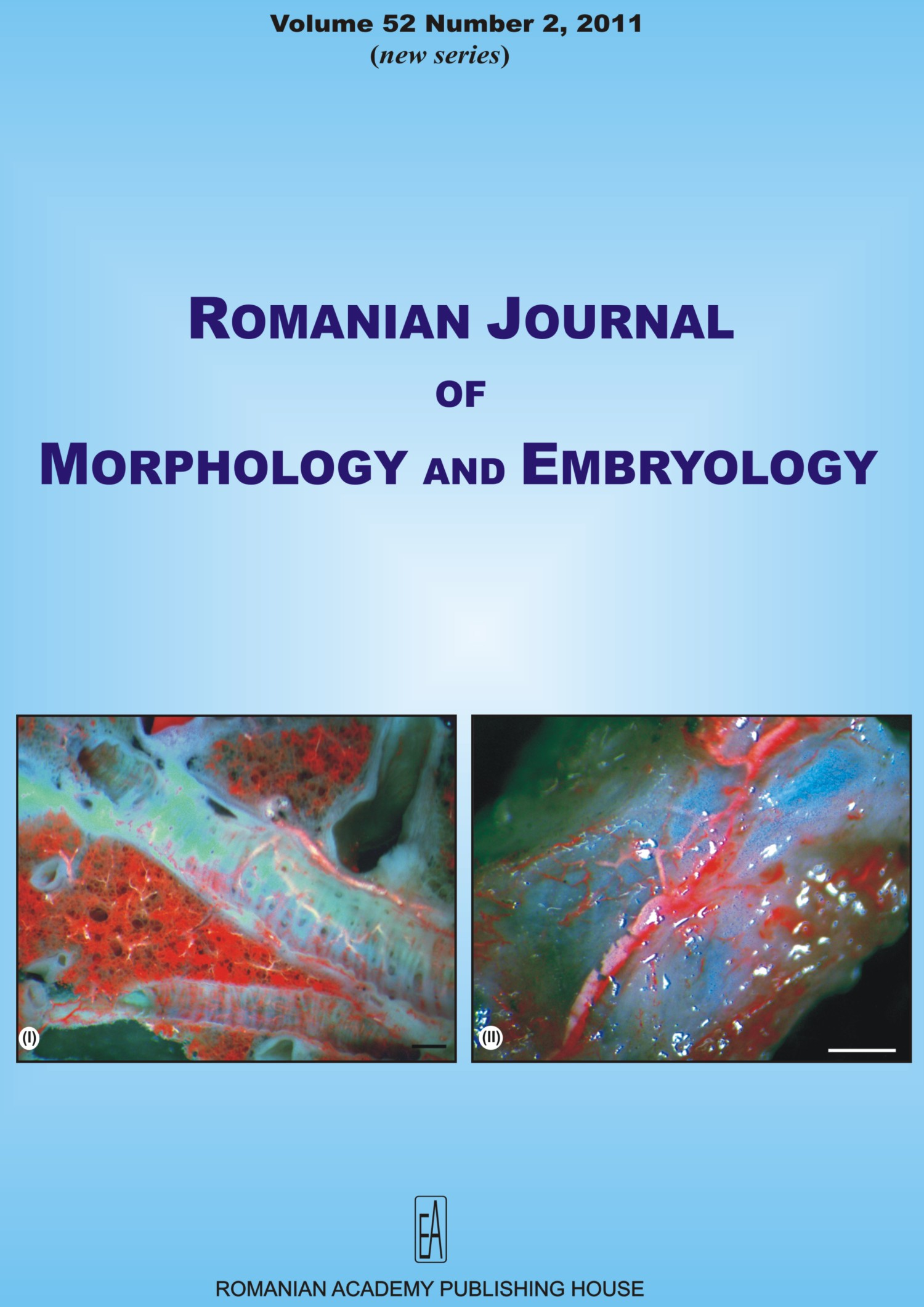 Romanian Journal of Morphology and Embryology, vol. 52 no. 2, 2011