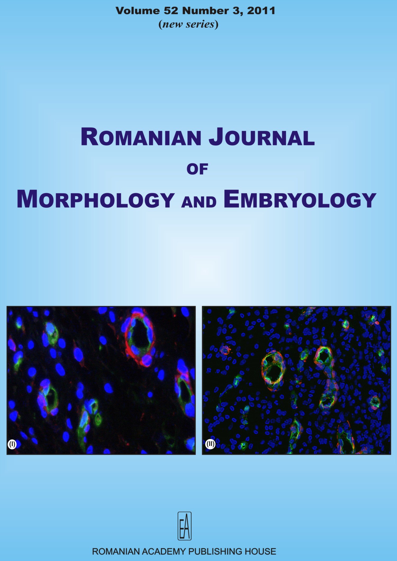 Romanian Journal of Morphology and Embryology, vol. 52 no. 3, 2011