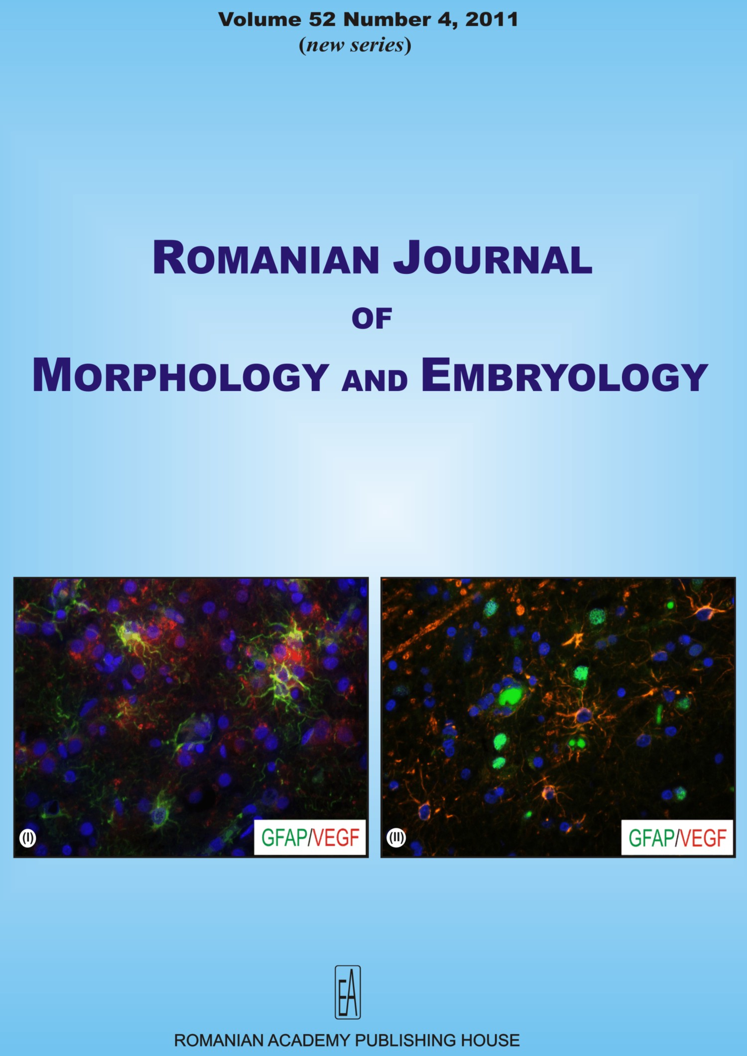 Romanian Journal of Morphology and Embryology, vol. 52 no. 4, 2011