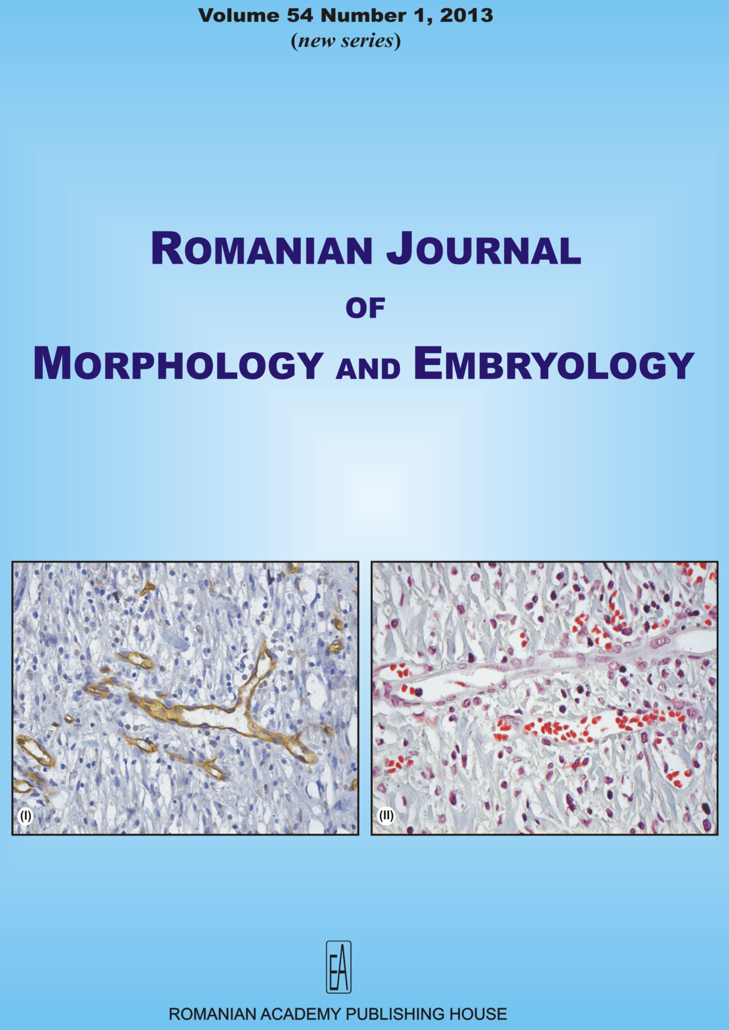 Romanian Journal of Morphology and Embryology, vol. 54 no. 1, 2013