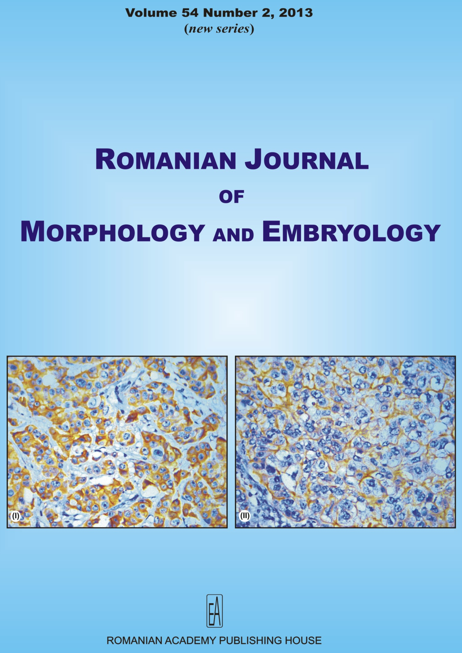 Romanian Journal of Morphology and Embryology, vol. 54 no. 2, 2013