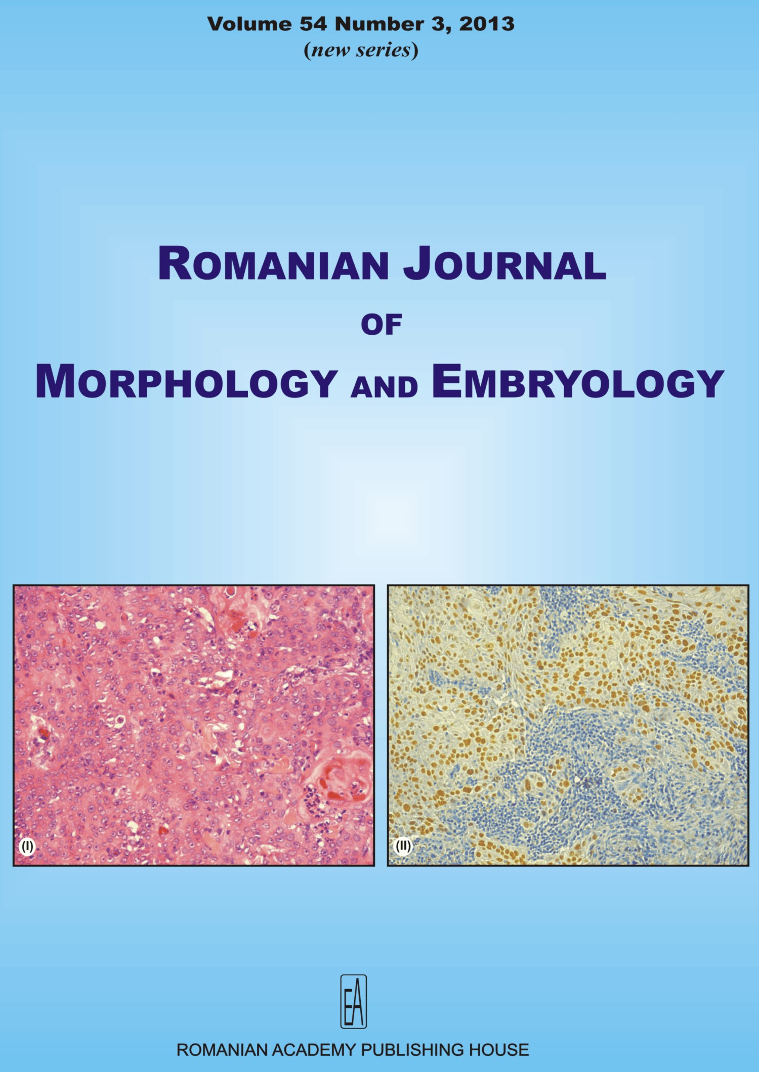 Romanian Journal of Morphology and Embryology, vol. 54 no. 3, 2013