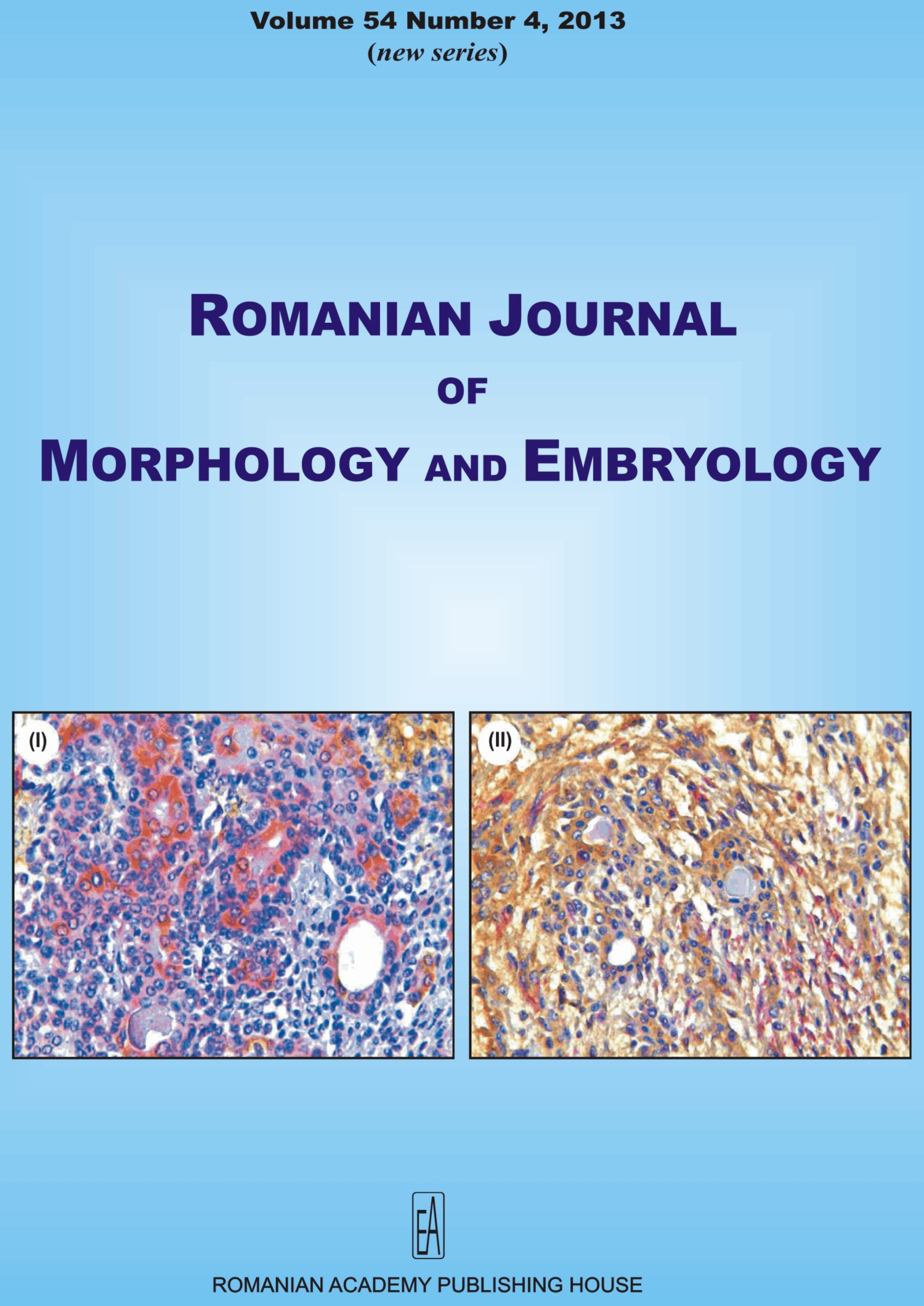 Romanian Journal of Morphology and Embryology, vol. 54 no. 4, 2013