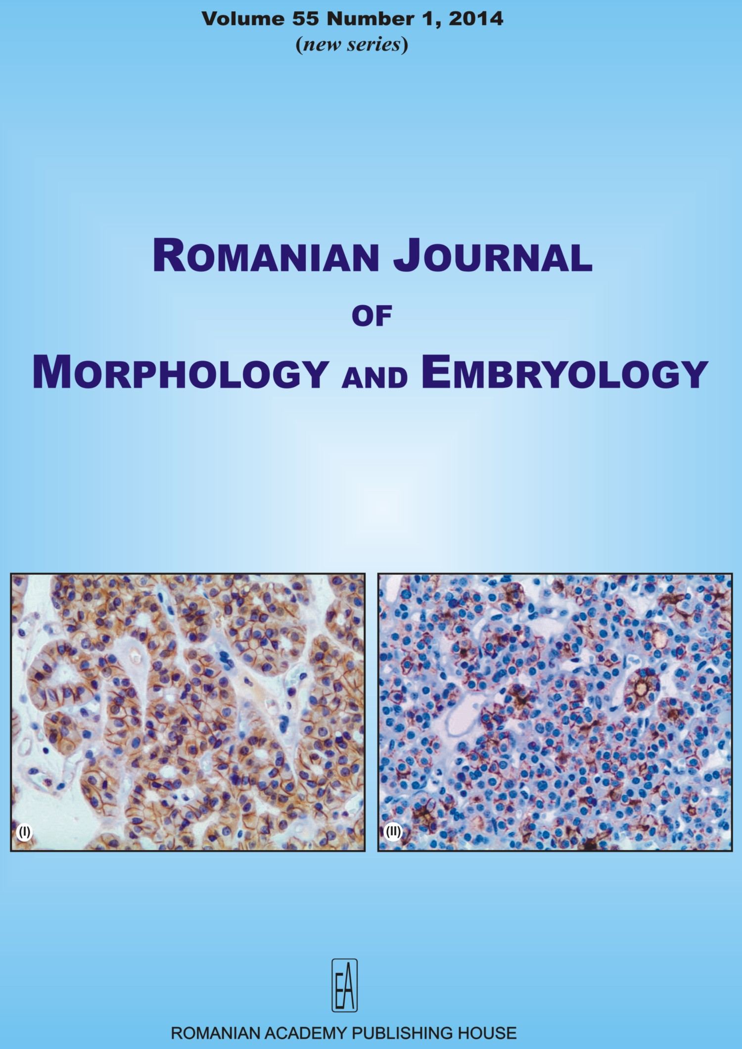 Romanian Journal of Morphology and Embryology, vol. 55 no. 1, 2014