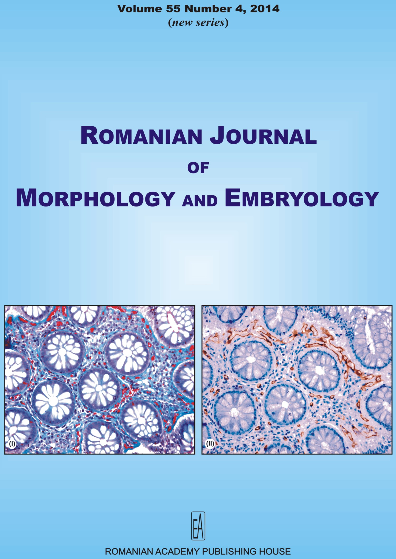 Romanian Journal of Morphology and Embryology, vol. 55 no. 4, 2014