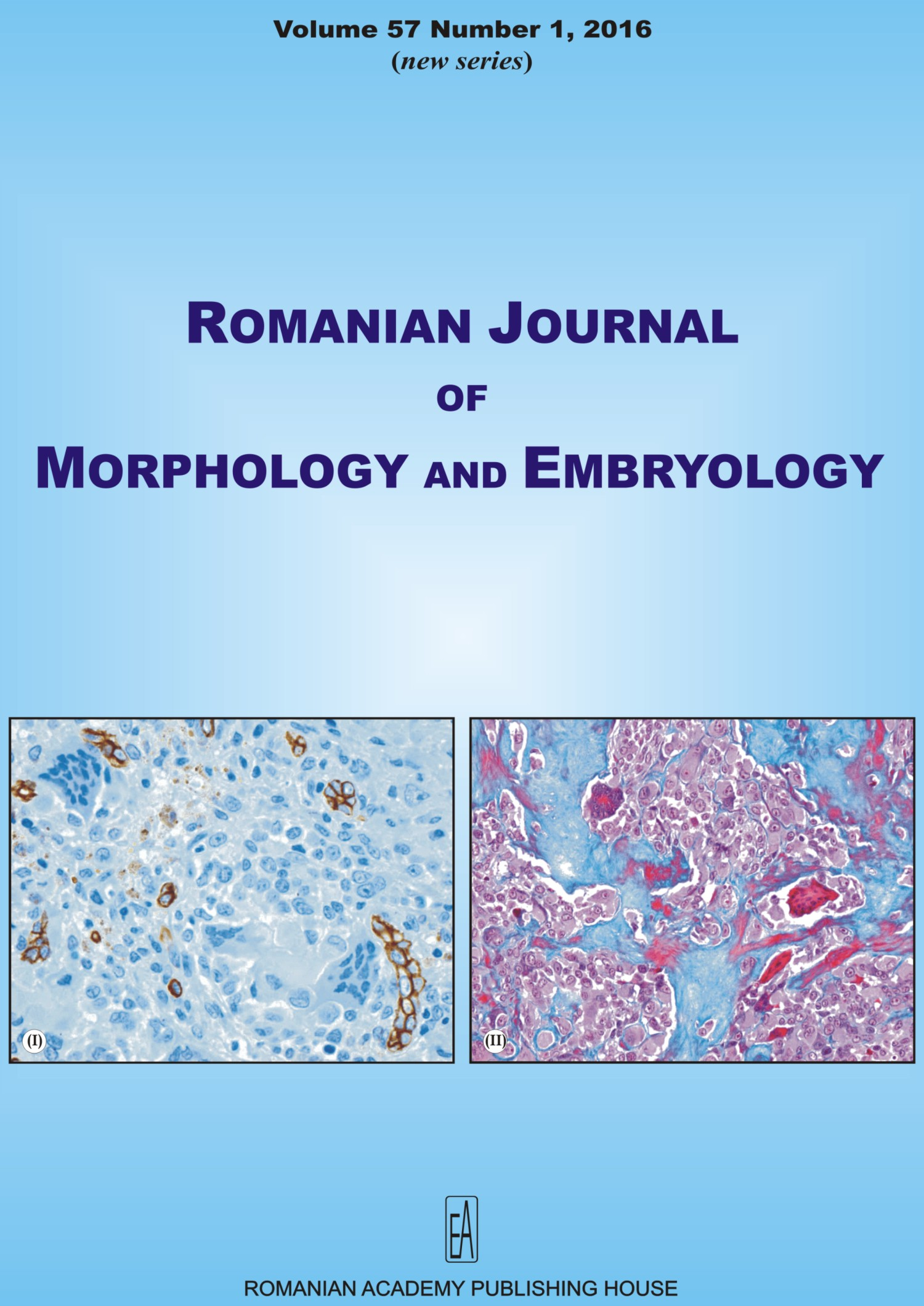 Romanian Journal of Morphology and Embryology, vol. 57 no. 1, 2016