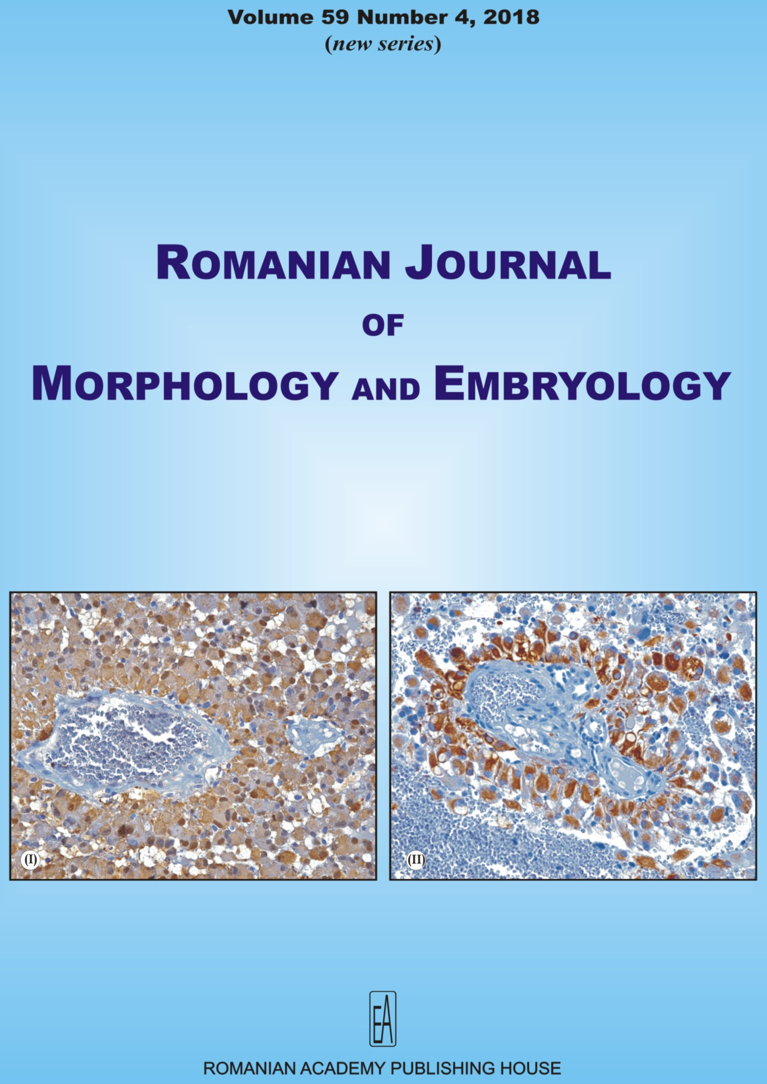 Romanian Journal of Morphology and Embryology, vol. 59 no. 4, 2018